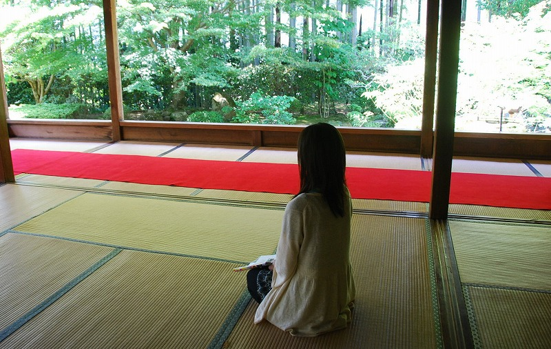 京都の旅あれこれ①_c0187781_2059435.jpg