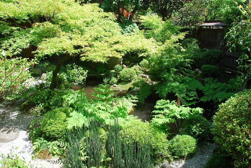京都の旅あれこれ①_c0187781_215155.jpg