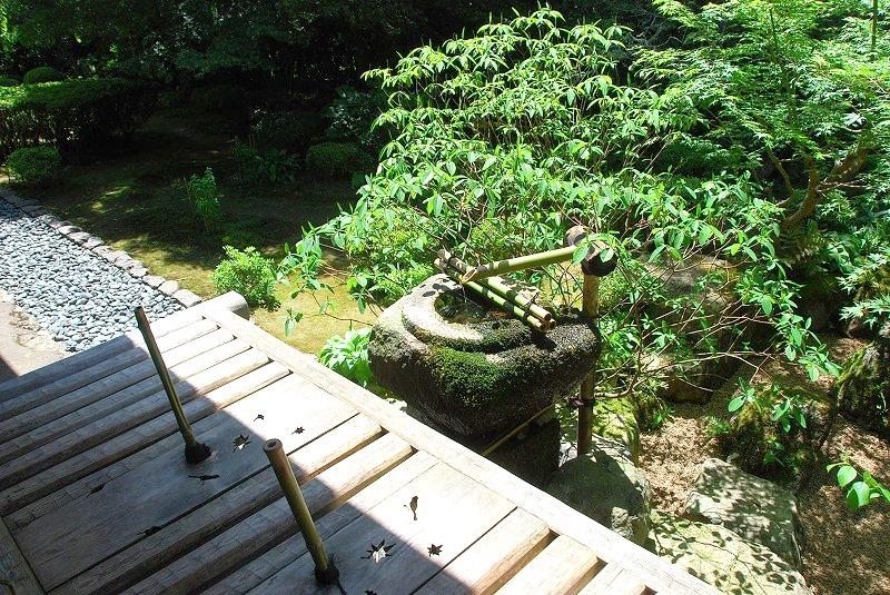 京都の旅あれこれ①_c0187781_23413679.jpg