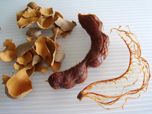 スイートタマリンド果肉