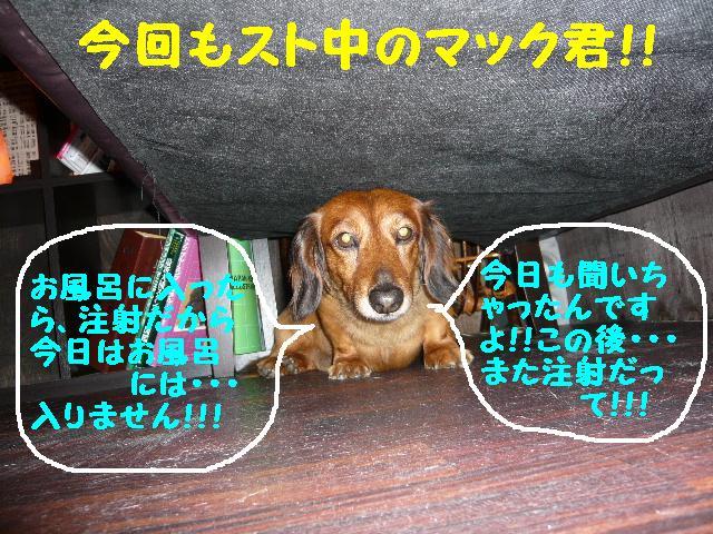 b0130018_14203049.jpg
