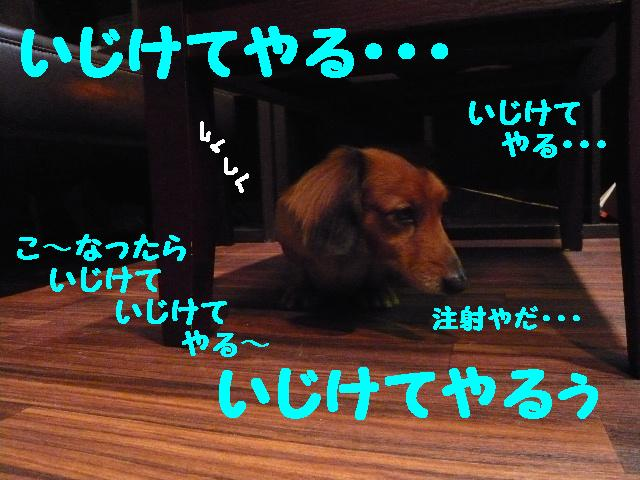 b0130018_14213258.jpg