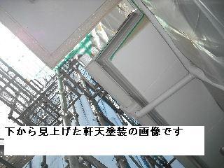 f0031037_2055545.jpg