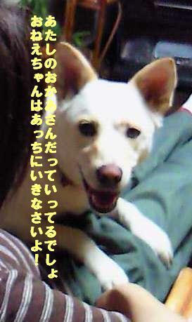 f0195543_2229278.jpg