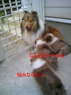 f0126965_12215733.jpg