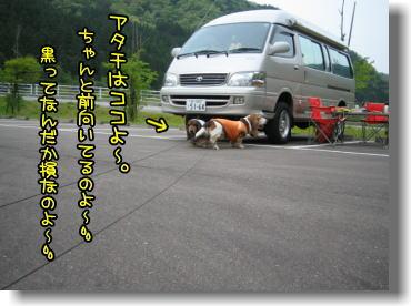 f0204072_8554114.jpg