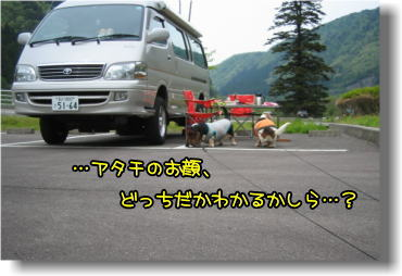 f0204072_8564640.jpg
