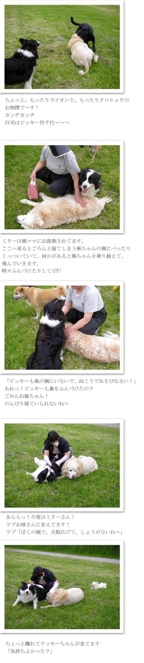 f0114893_9212012.jpg