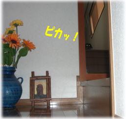c0058727_17363814.jpg