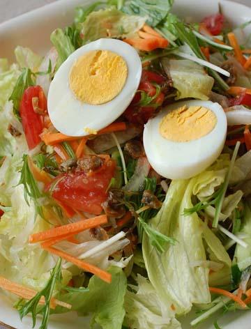 【茶漬しじみの新鮮野菜サラダ】_c0039736_16355126.jpg