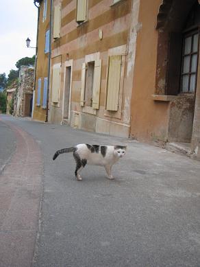 Roussillon_f0150936_16544971.jpg