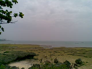 海へ。_c0156749_1761530.jpg