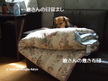 f0150377_19265742.jpg