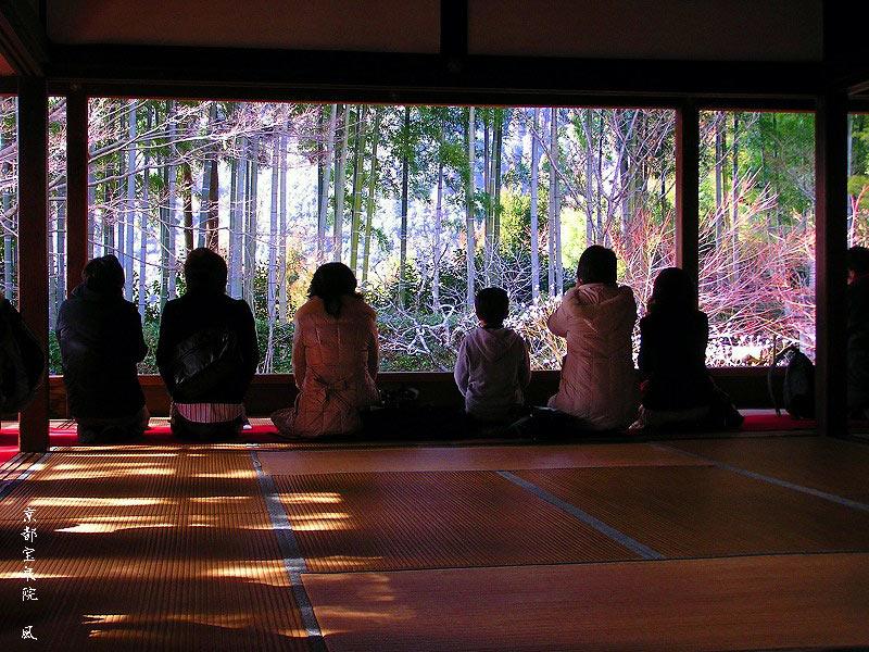 京都の旅あれこれ①_c0187781_19385615.jpg