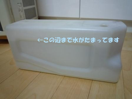 c0196992_13594060.jpg