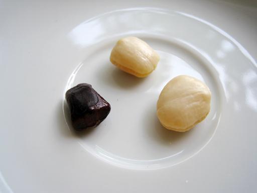 スイートタマリンド種子