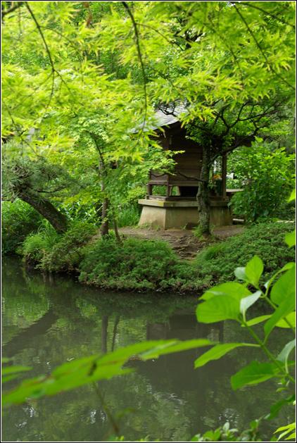 b0120903_18251174.jpg