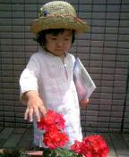 花ととわちと麦藁ぼうし_e0061304_17591164.jpg