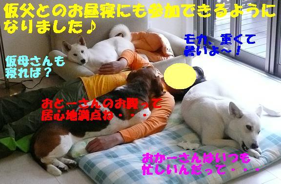 f0121712_1301252.jpg