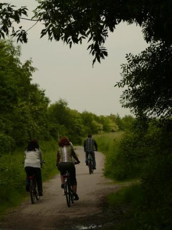 自転車日和_b0148617_2513153.jpg