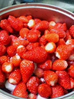 春の食べ物_b0185232_1374581.jpg