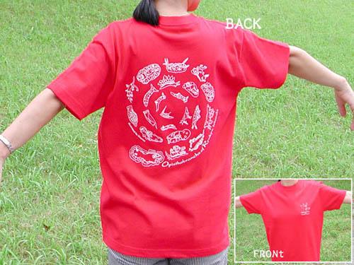 ウミウシTシャツ作ります_c0193735_12211026.jpg