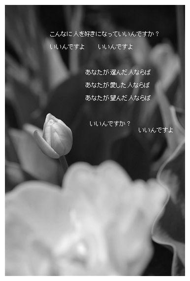 f0150243_09421.jpg