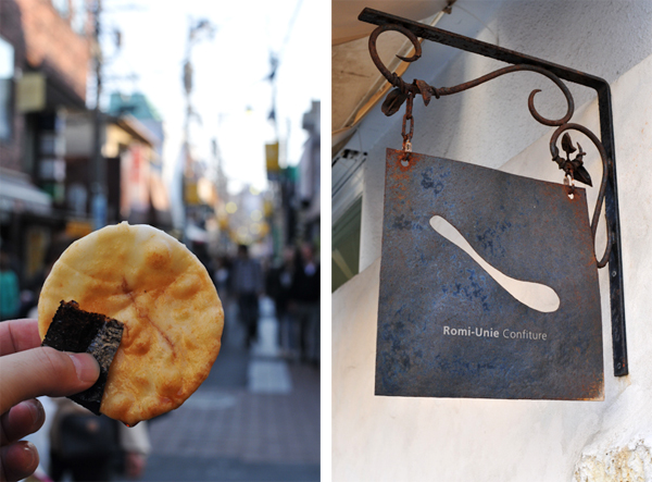 鎌倉の桜 2009_a0003650_8325850.jpg