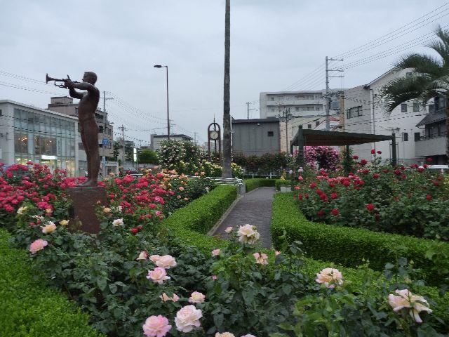岡本 バラ公園(本山街園)_b0054727_23294561.jpg