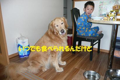f0114128_18342836.jpg