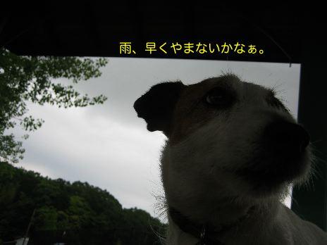 c0179472_1452179.jpg