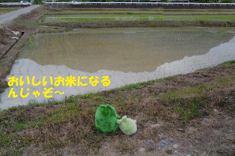 b0059978_15131992.jpg