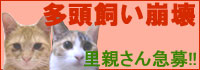 【まりまり】 定期健診_a0066779_4432352.jpg
