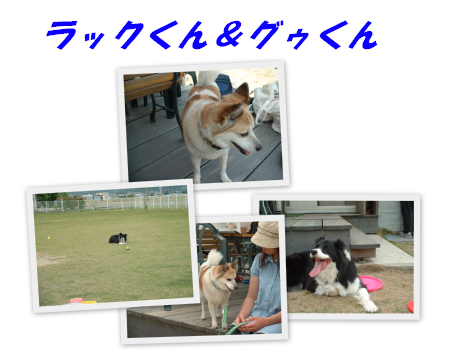 c0120585_20305660.jpg
