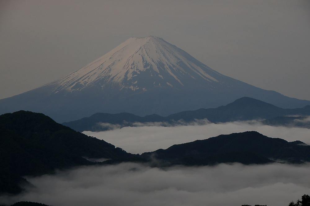 番外 コマドリ/雲海の富士_b0024798_5125848.jpg