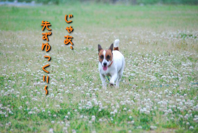 f0203612_022642.jpg