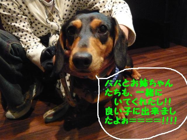 b0130018_10412773.jpg
