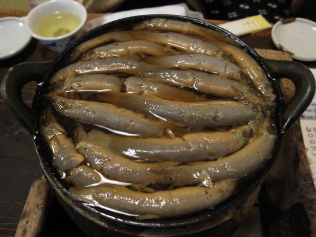 http://pds.exblog.jp/pds/1/200905/25/19/a0100919_18465728.jpg