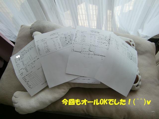 f0182121_15124140.jpg