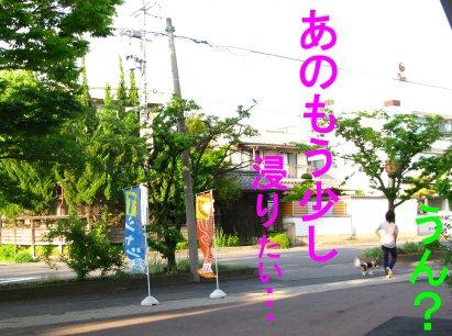 b0185323_15513025.jpg