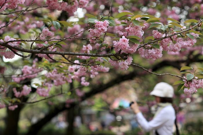 4月18日(土) 晴れ 楽しい一日でした(追加あり)_e0155629_6171168.jpg