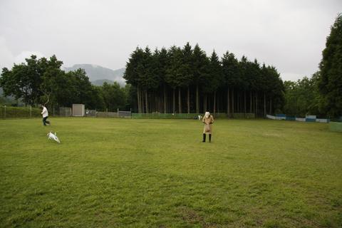 雨の足柄幼稚園体育祭_c0070377_23412399.jpg