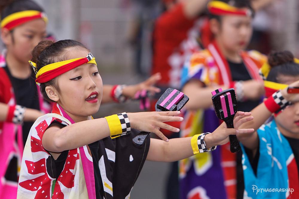 豊川おいでん祭:その1_c0187584_822276.jpg