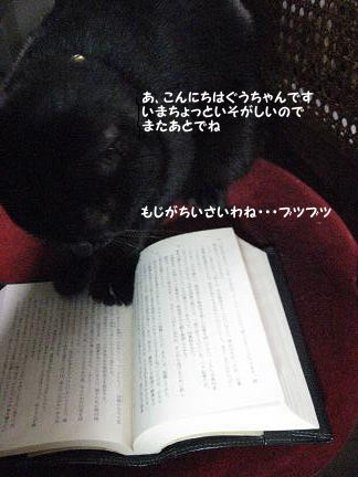 b0084186_1731787.jpg
