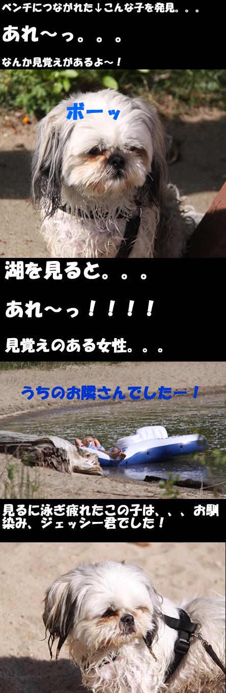 c0164491_13215716.jpg