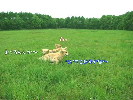 遠方より友集まる(その3)_f0064906_19395997.jpg