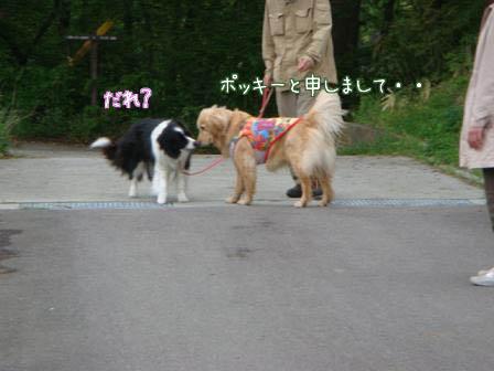 遠方より友集まる(その3)_f0064906_19485349.jpg