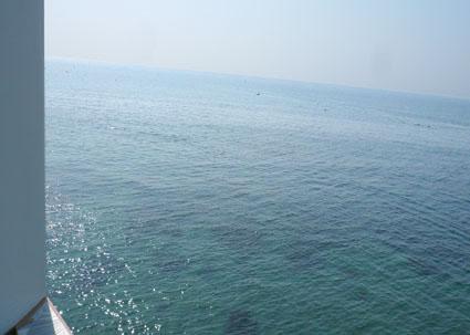 Nowhere but Sajima_f0201310_945154.jpg