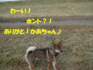 f0143123_20573278.jpg