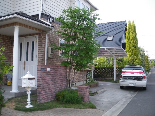 庭樹剪定です_c0186441_22251047.jpg